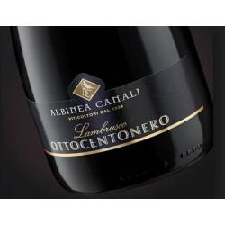 Lambrusco 800 Nero Albinea Canali